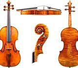 Staré housle - výborně zaplatím!