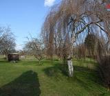 Prodej, pozemek 1269 m2, Miřetice - Havlovice